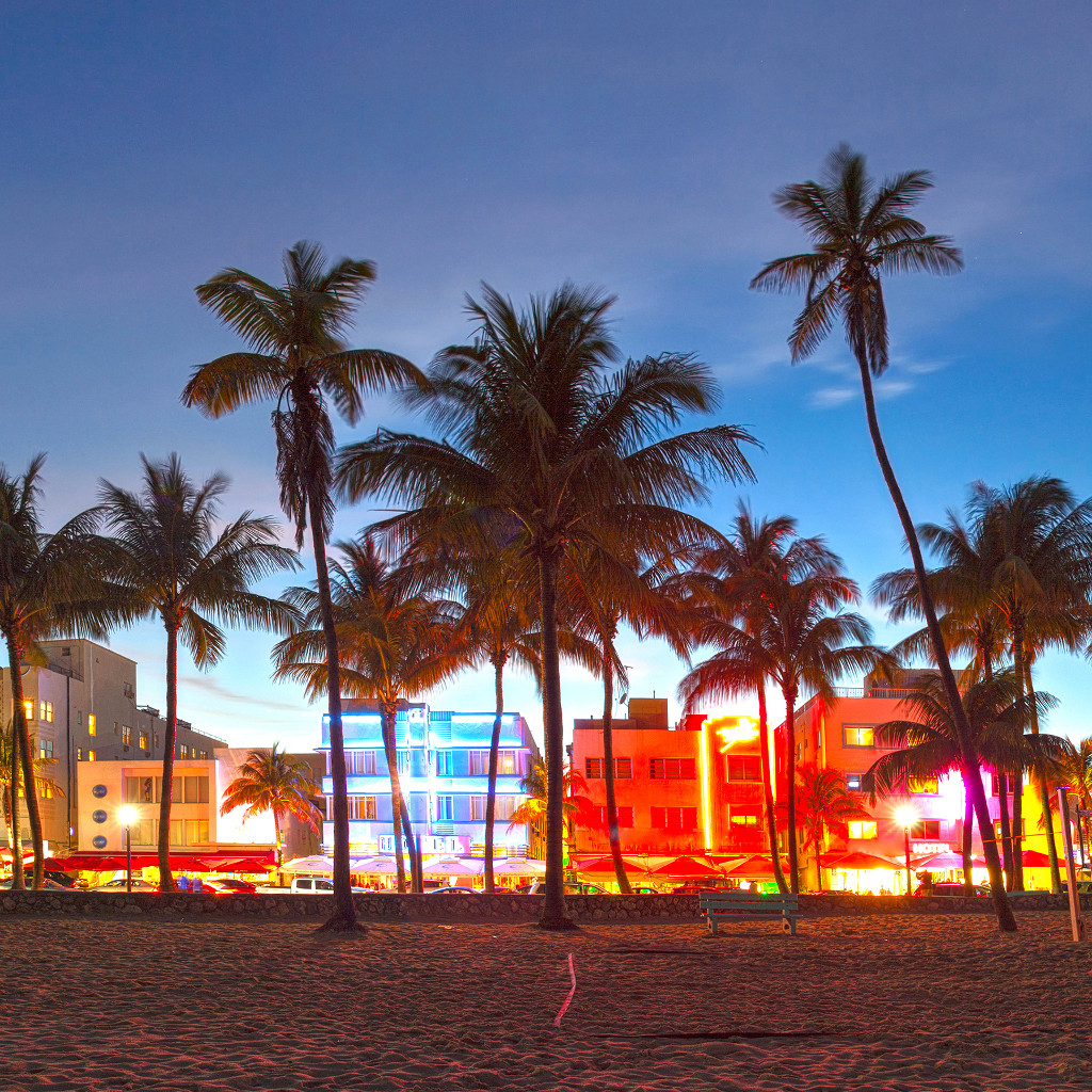 Insight video - Discover Miami and surroundings