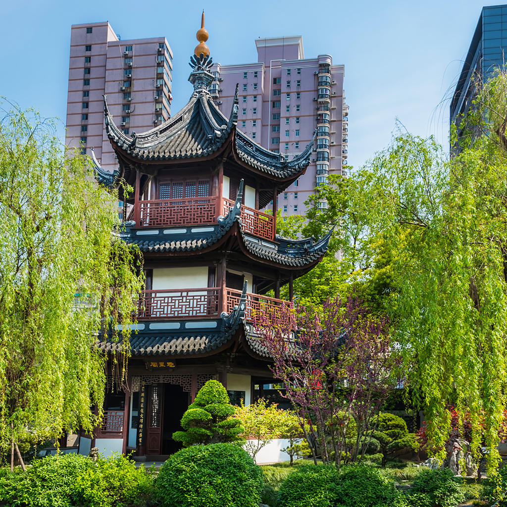 Insight video - Discover Shanghai and surroundings