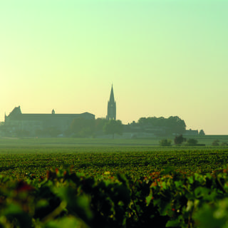 Saint-Emilion: Medieval village and Grands Crus