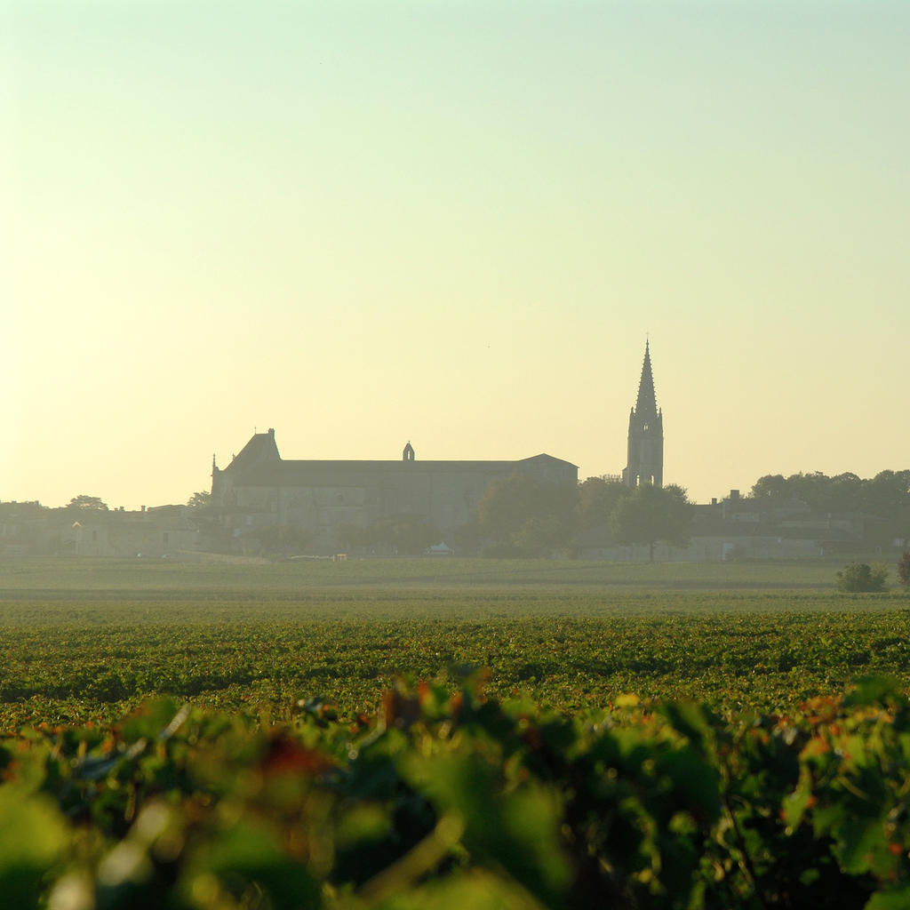 A tour of the Bordeaux wine routes