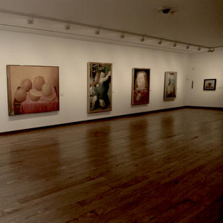 Botero Museum: ample curves