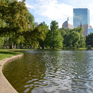 Jogging on Boston Common