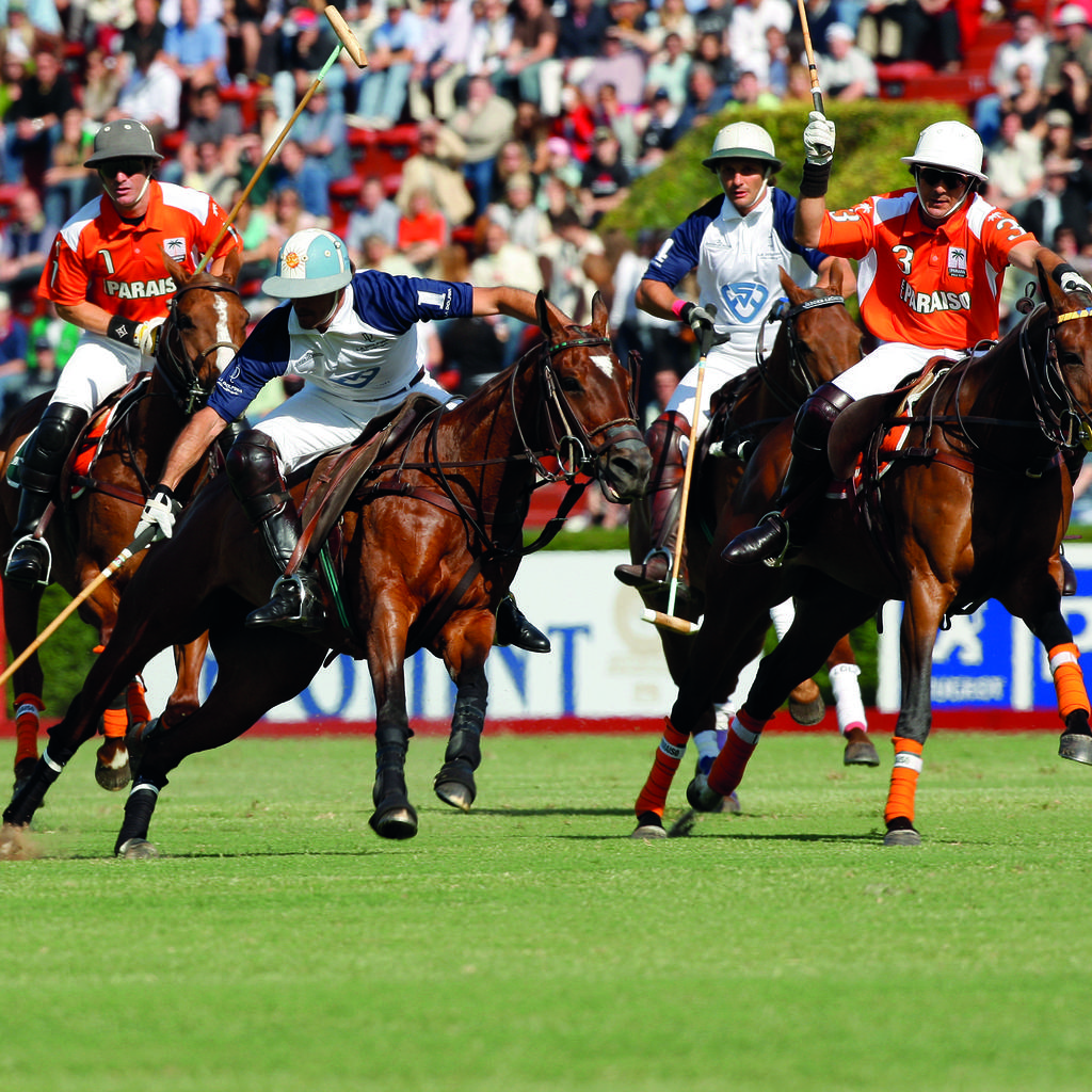 Polo, the second national sport