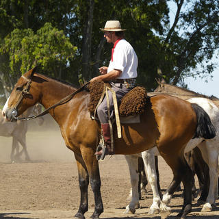 San Antonio de Areco, a village that shows Argentina's soul