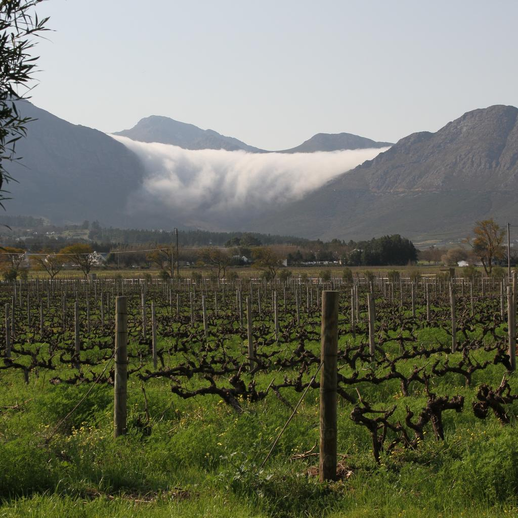 Franschhoek: 'the French corner'