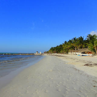 Escape to tropical Isla Holbox