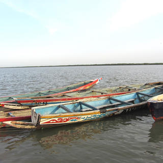 Explore the south with a 'pirogue' tour in Lower Casamance