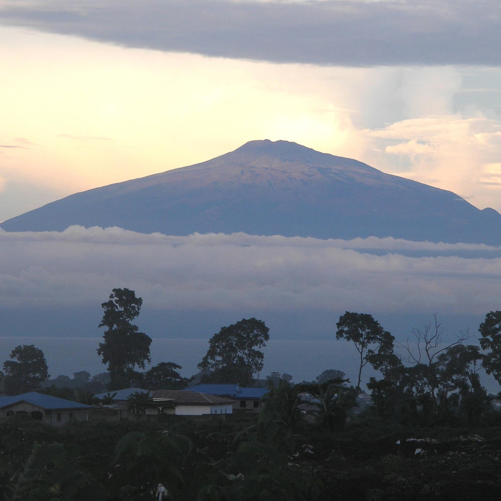 Mount Cameroon: hike up the second highest summit of Africa