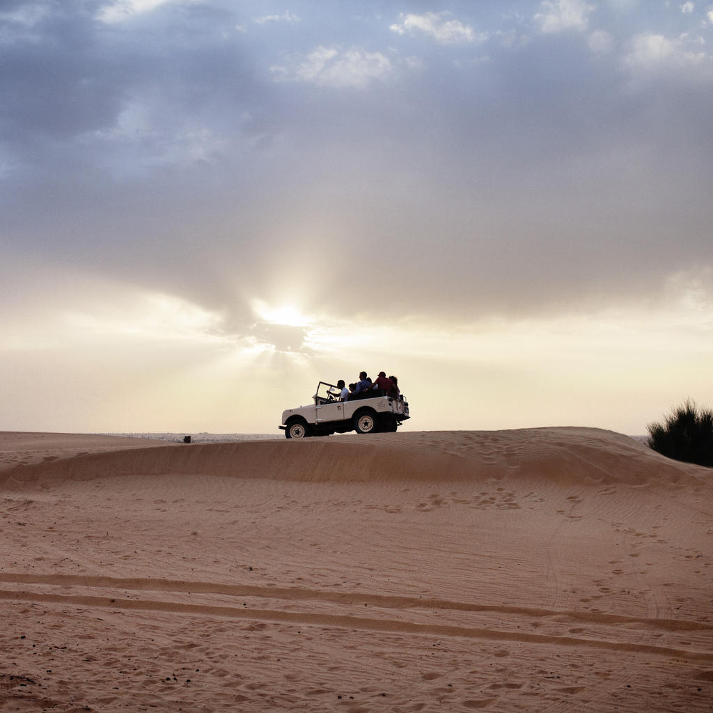 Safari: explore the sand, up close and personal