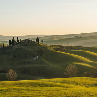 Exclusive trekking and wine tour experience in Chianti