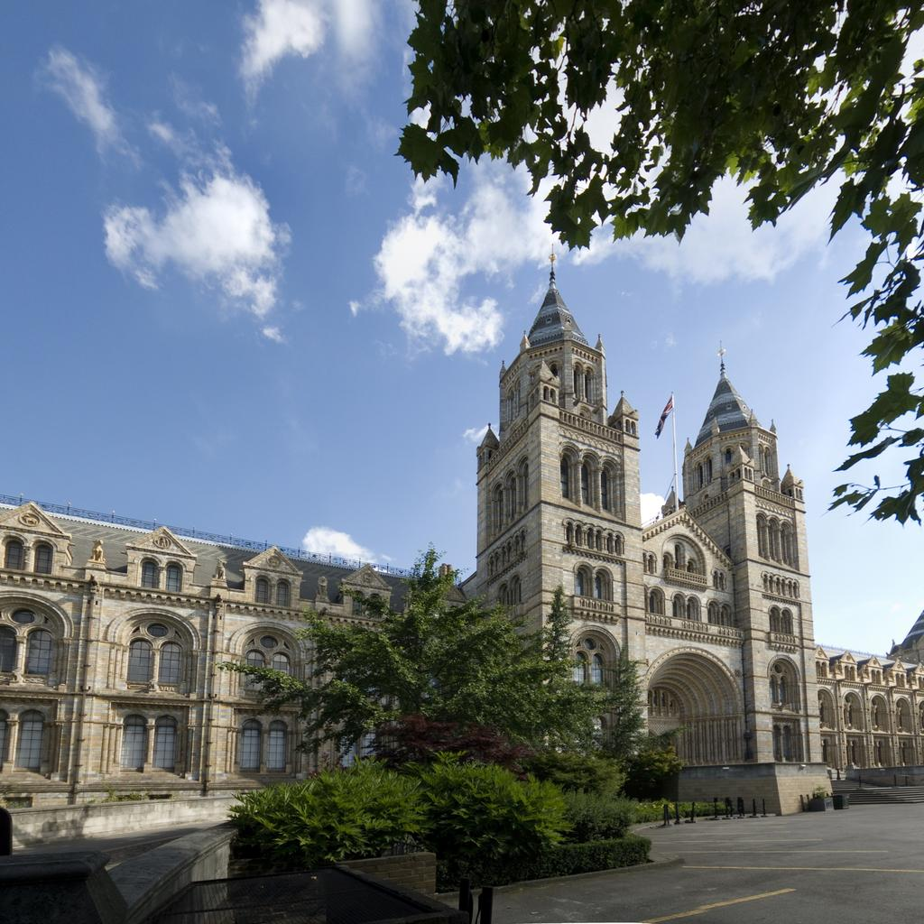 National History Museum: for history buffs of all ages