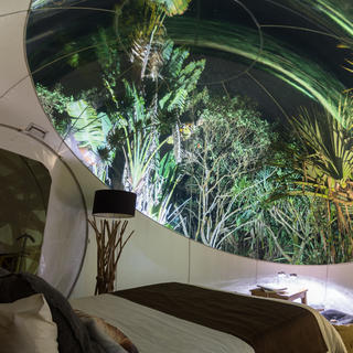 Sleeping in your little bubble amidst the nature of Mauritius