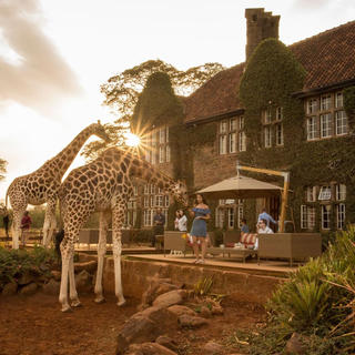 Getting close to wildlife in Nairobi: the top 5 places