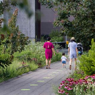 Walk along the High Line