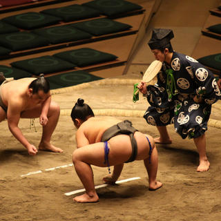 Sumo wrestling: the clash of the titans
