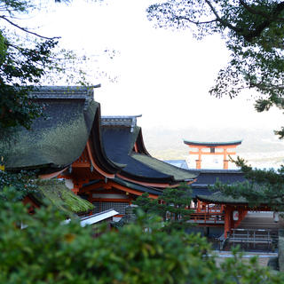 Miyajima: a Japanese treasure