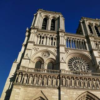 Notre-Dame, gothic emblem of the French capital