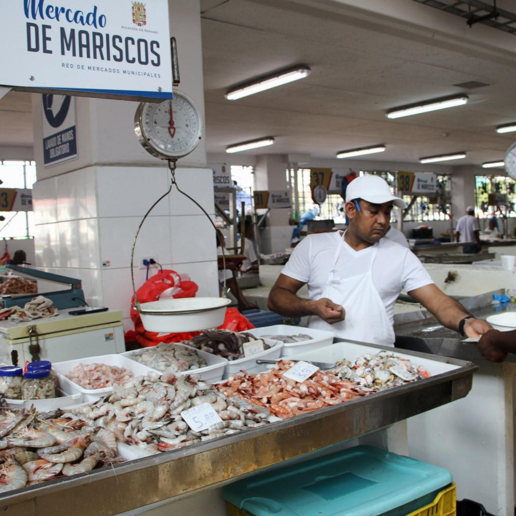 Discover the fish market