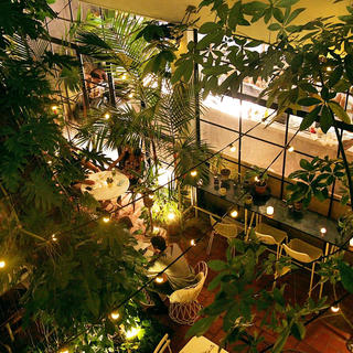 Ochoymedio, romantic patio and fusion food