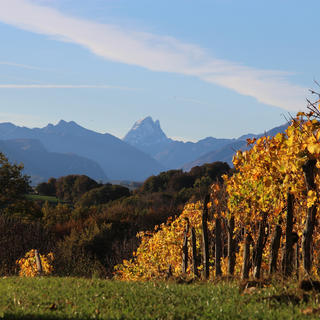 Jurançon: follow the wine route