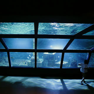 The Réunion Aquarium, a showcase of the Réunion marine environment