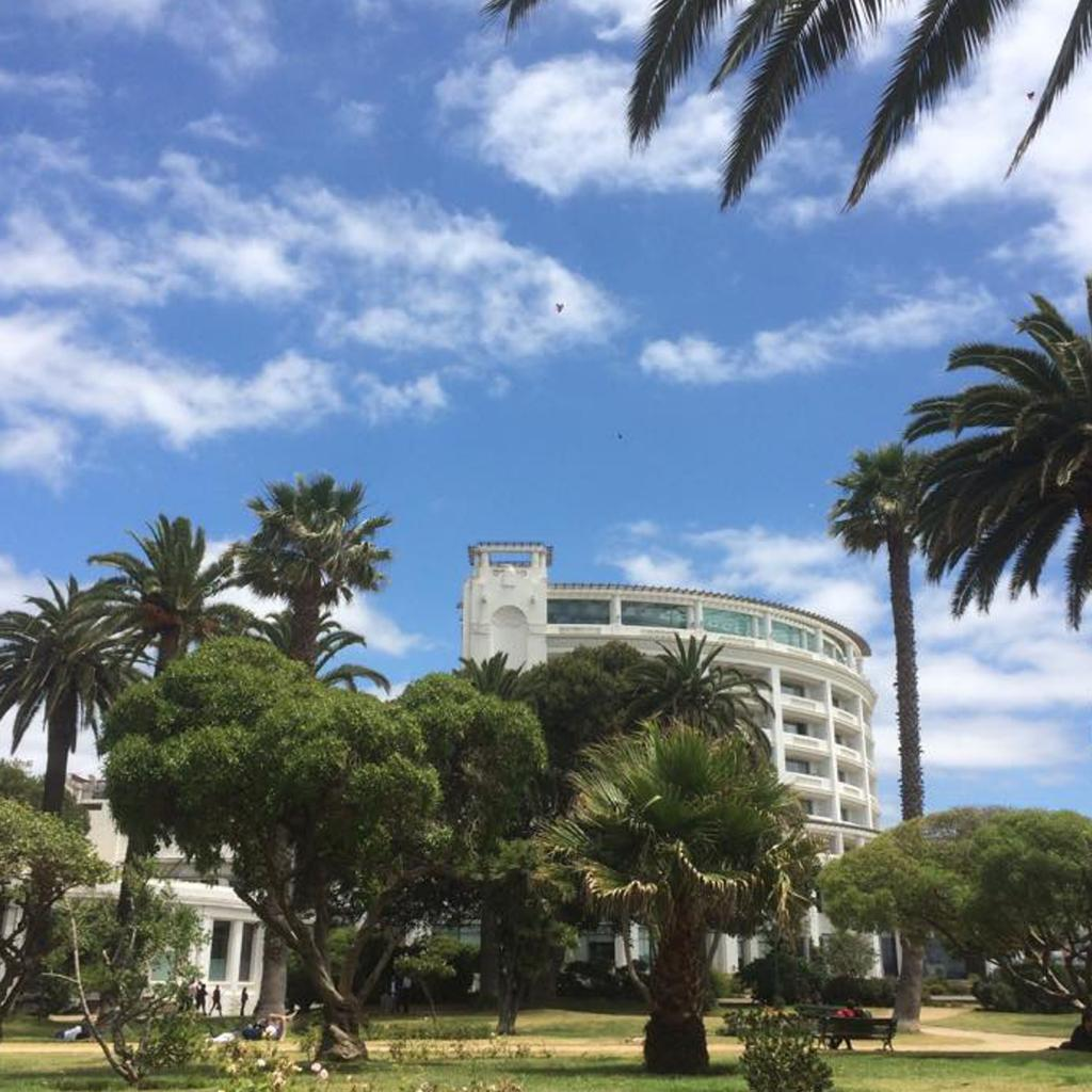 Enjoy Viña del Mar: a four-star hotel with its feet in the water