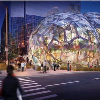 Visit the heart of the Amazon Spheres