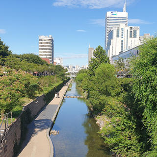 Cheonggyecheon: a soothing stroll in the heart of the megalopolis