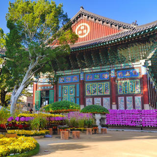 Jogyesa Buddhist Temple: an urban oasis of spirituality