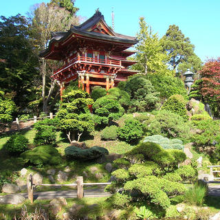 Time to meditate at the Japanese Tea Garden