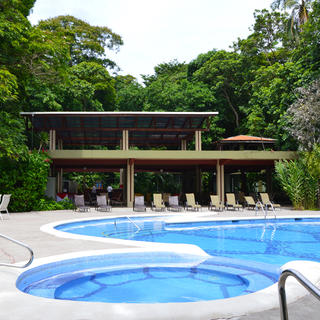 Immerse yourself in the jungle at Pachira Lodge