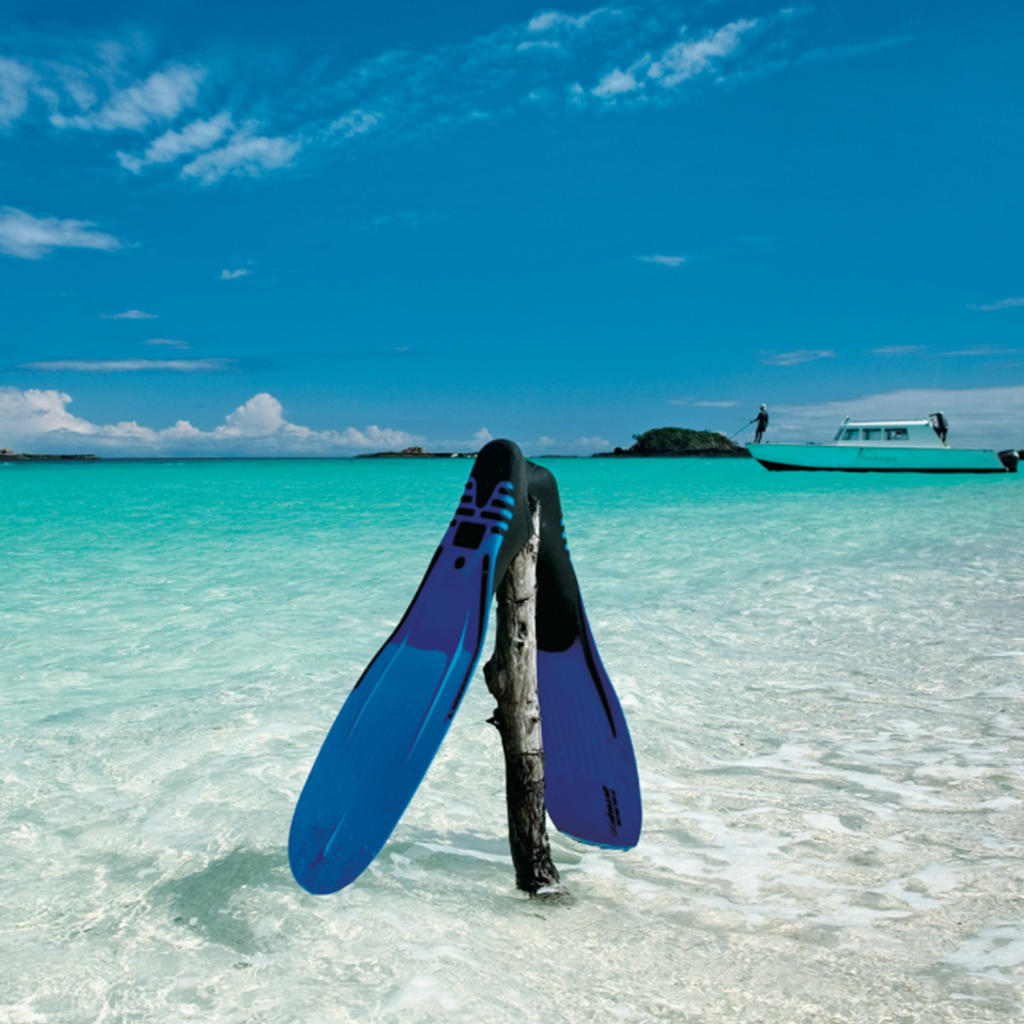 Dive into the turquoise waters of Madagascar!