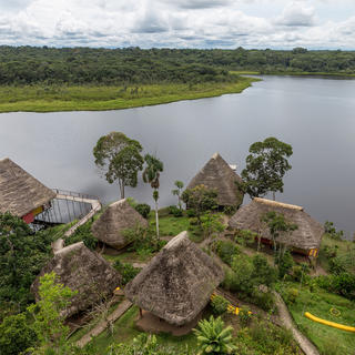Napo Wildlife Center, ecofriendly lodges in the Amazon rainforest