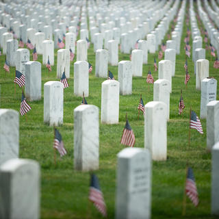 Arlington Cemetery: the final resting place of the fallen