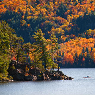 Algonquin Provincial Park: a tour that is worth the journey