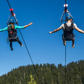 Experience the Grouse Mountain zipline