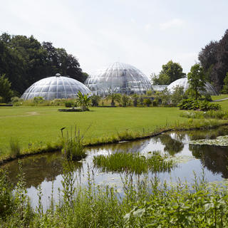 Zurich's botanical garden: a little paradise in the city