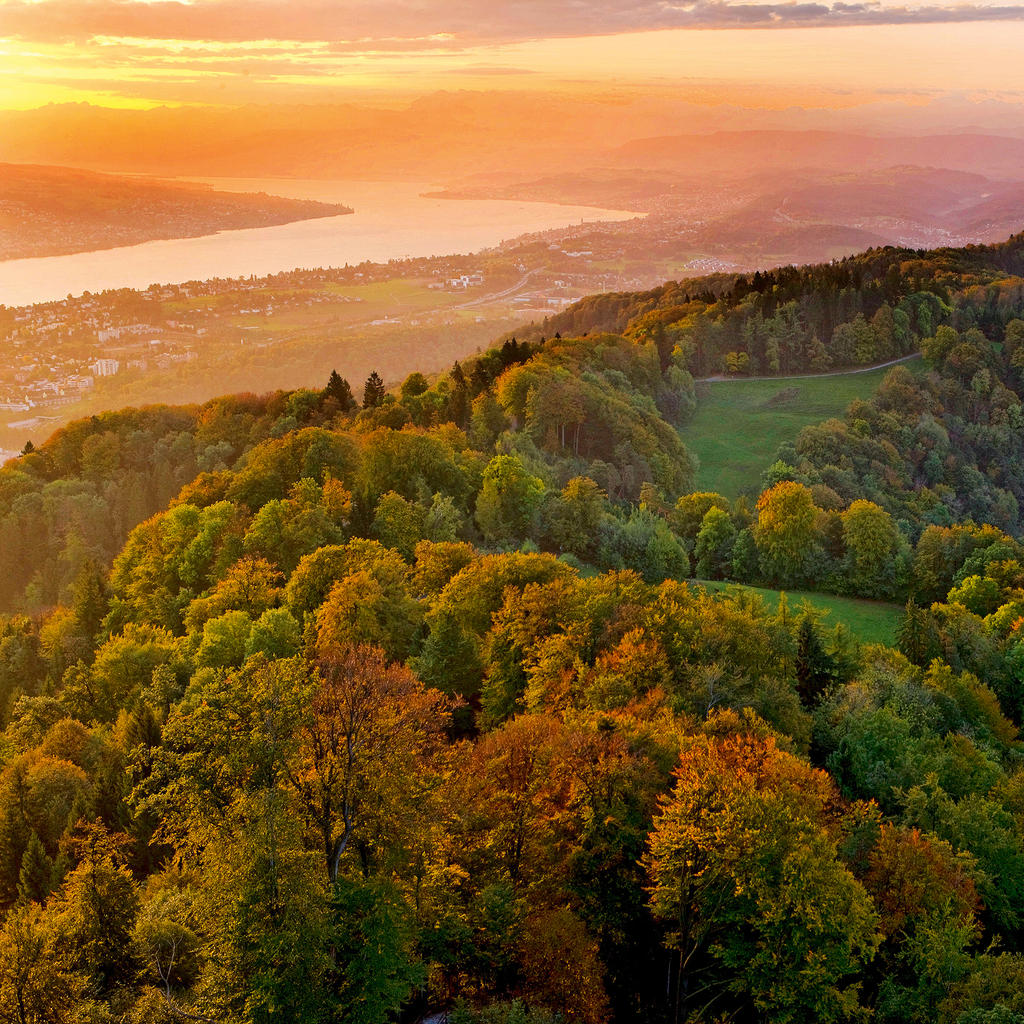 Uetliberg: the top of Zurich